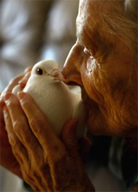 elderly woman kissing a dove